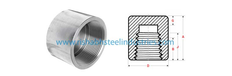 Stainless Steel Threaded Cap Manufacturers, Forged Threaded